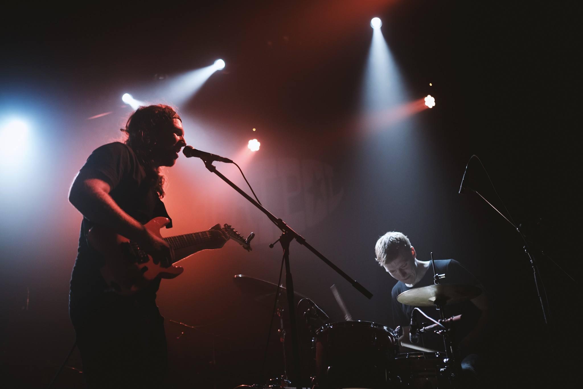 Konzert: Electric Turtles // The Fous